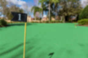 putting green 2.jpeg
