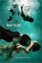 Rain Scald by Tacey M Atsitty.jpeg