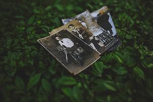 leaves-old-photographs-5829.jpg