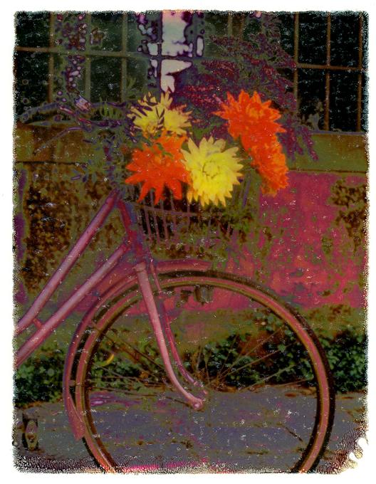 Italian Floral Bike