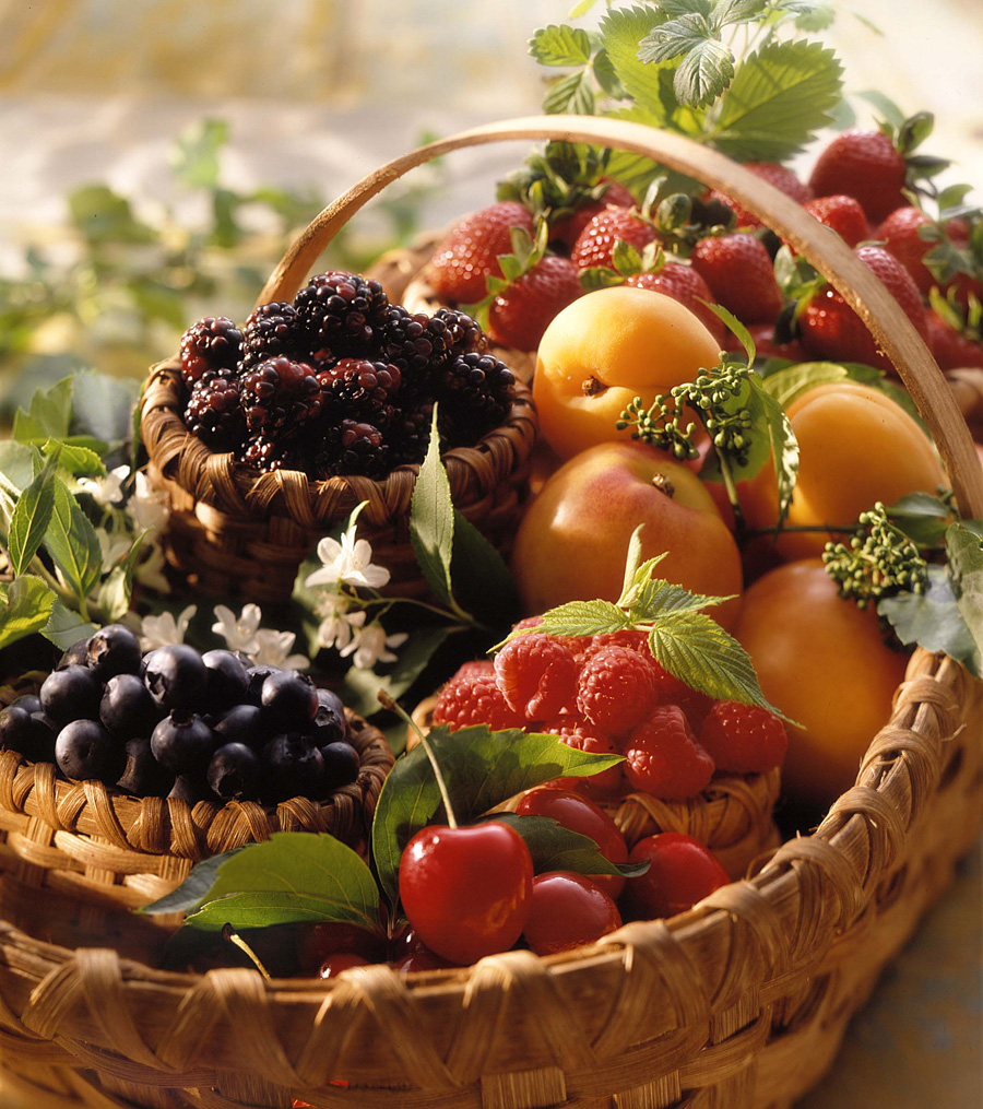 fruitbasket_WEB