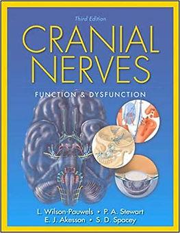 Cranial Nerves.jpg