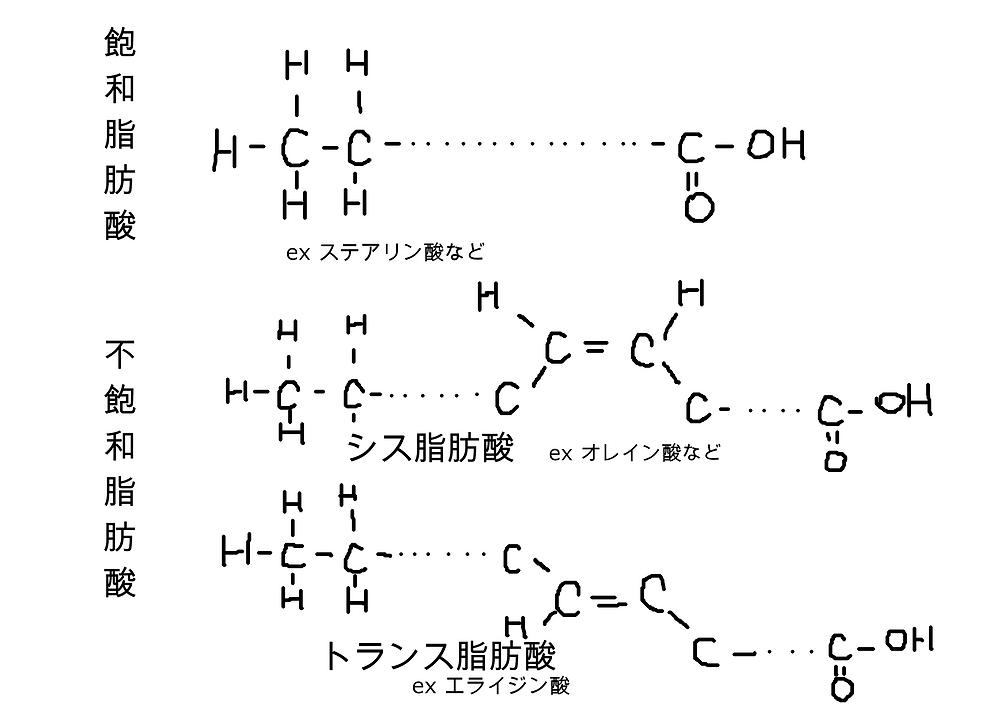 脂肪酸の構造式
