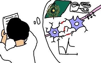 電子回路で脳を再現できる可能性を発見