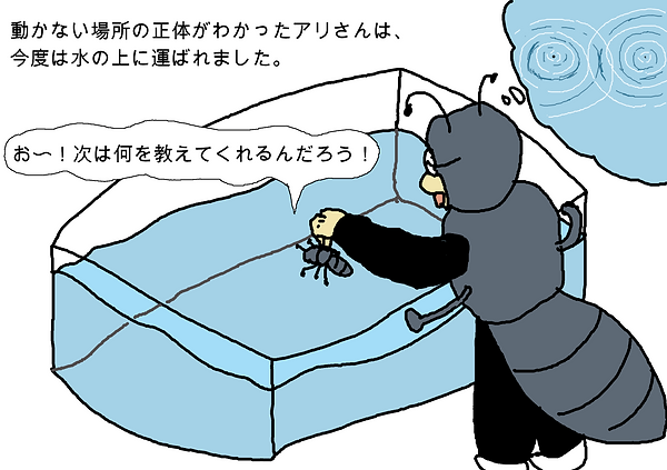 動かない場所の正体がわかったアリさんは、今度は水の上に運ばれました。お〜!次は何を教えてくれるんだろう!