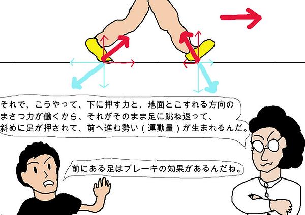 それで、こうやって、下に押す力と、地面とこすれる方向の摩擦力が働くから、それがそのまま足に跳ね返って、斜めに足が押されて、前へ進む勢い(運動量)が生まれるんだ。前にある足はブレーキの効果があるんだね。