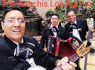 Sextetos Trimariachis Los Aguilar En Zap