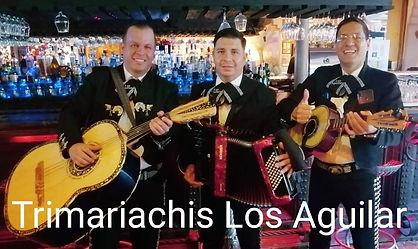 Cuartetos Trimariachis En Jalisco Guadal