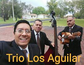 Trios En Gdl Zapopan 100 % Profesional J