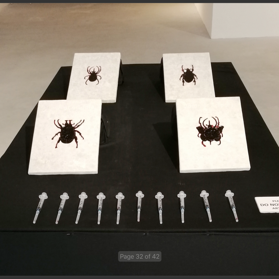 Four marbel slates with blood filled beetles curving, Opening Performance work,