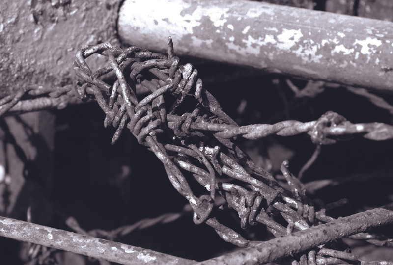 Thorns Old-002.jpg