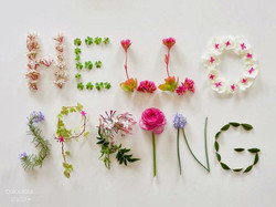 9f018adfc3c47994b5aa44cb5a28af55--spring-has-sprung-april-showers