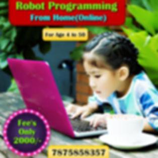 online Coding Course.jpg