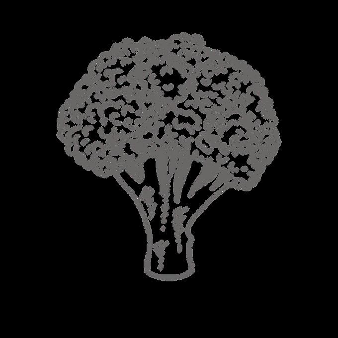 wholesale broccoli