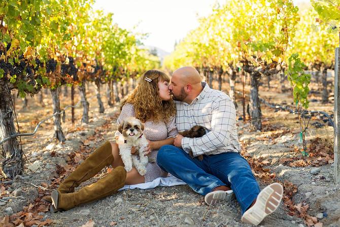 Amber + David Napa Engagement Session | Kaitlynn Tucker Photography