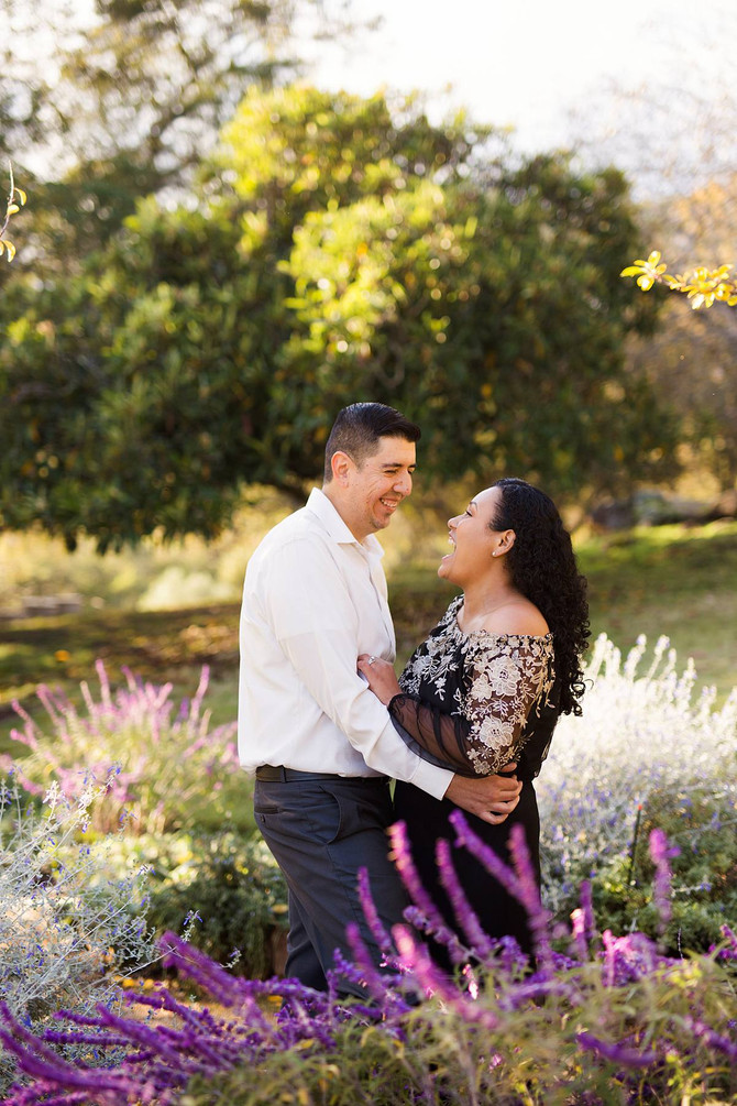 Karina + Auggie Sonoma Anniversary Session | Sonoma Photographer | Kaitlynn Tucker Photography