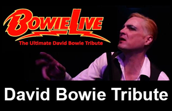 Bowie Live NS.jpg