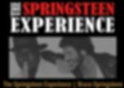 The Springstein Experience 2.jpg