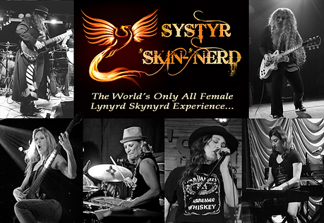 systyr_skinnerd_banner.png
