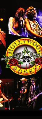 hollywoodroses1.jpg
