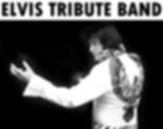 ElvisKingKruk_400.jpg