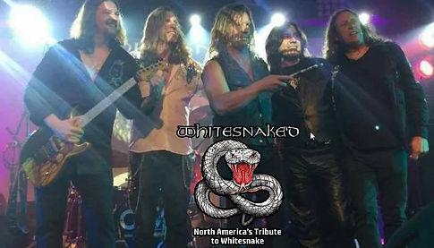 whitesnaked_band_logo.jpg
