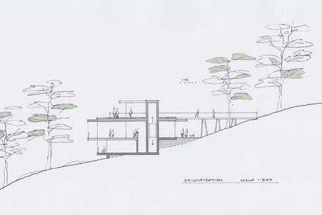 sektion.jpg