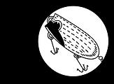 Lure logo2.png