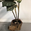 Thumbnail: Drop in Flower Pot