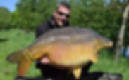 60lb plus Carp caught using a Trent baits boilie