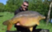 60lb plus Carp caught using a Trent baits boilie