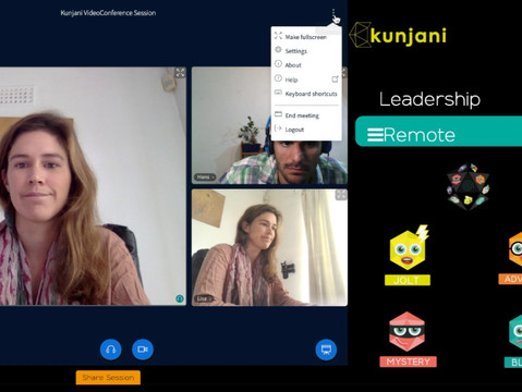 Video Conference Features