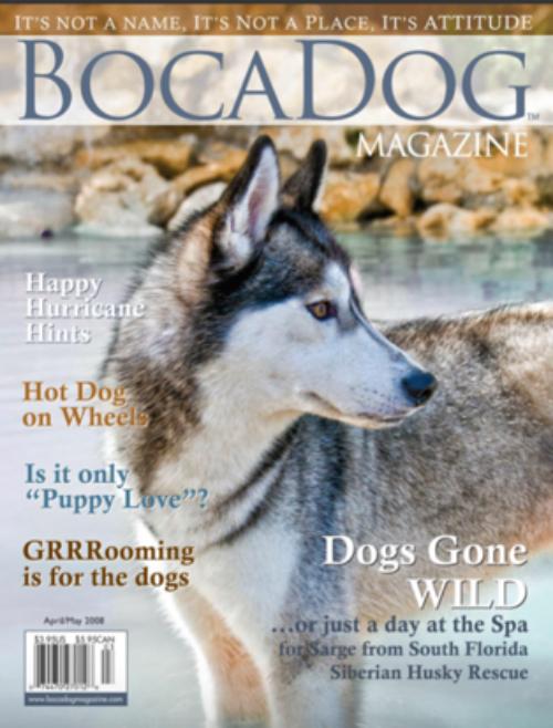 BocaDog Magazine
