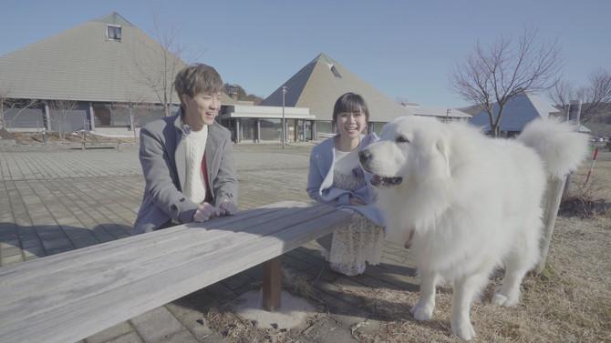 日本經濟產業省促興案『甜蜜計劃二部曲』外景拍攝