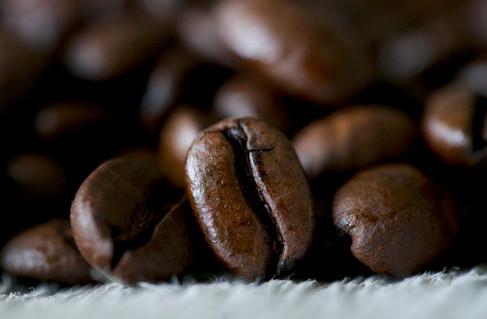 TINY FOOTPRINT COFFEE