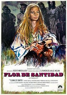 Flor_de_santidad-930153270-large.jpg