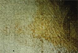 Cracquelure & yellowed varnish
