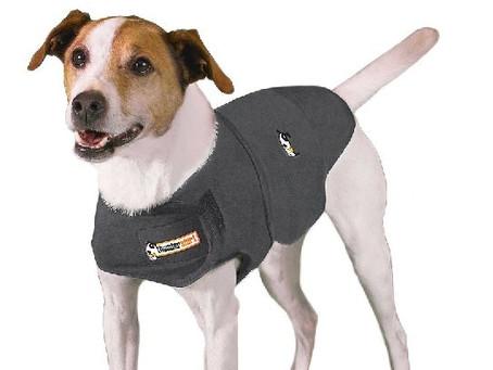 Does My Dog Need A Thunder Jacket?