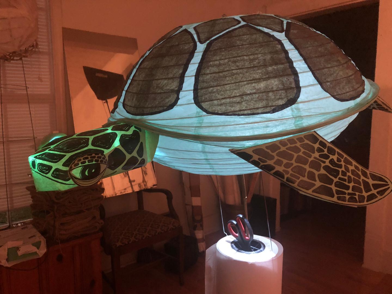 Sea Turtle Lantern!