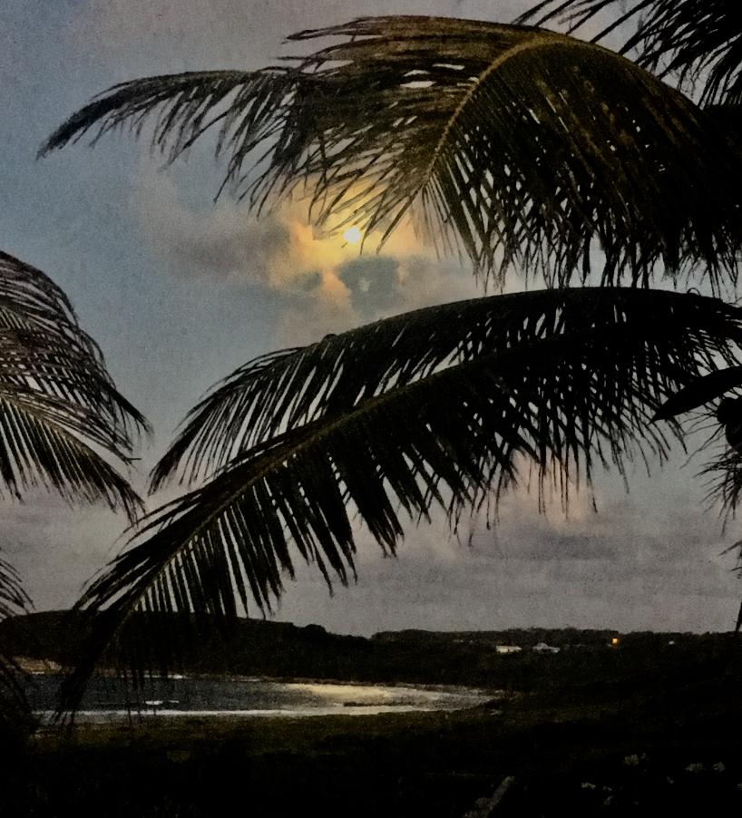 Lever de lune sur la baie