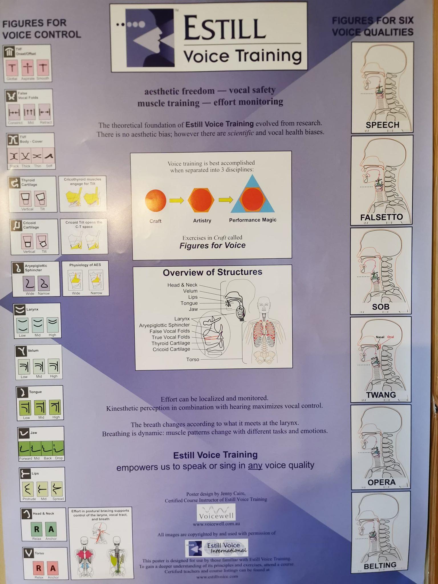 Estill Voice Training Overview