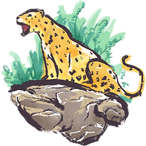 Illustreret Jaguar