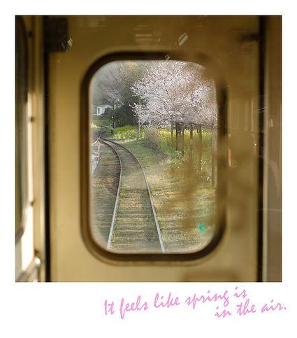 春_2.jpg