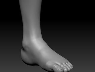 Female Anatomy Study (foot)