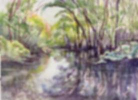 Florida Woods II.jpg