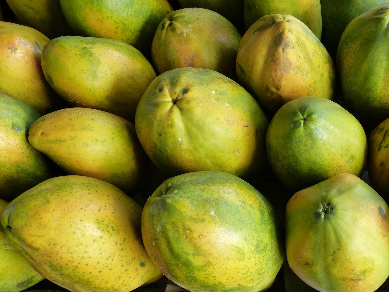 papaya-334461_1920.jpg