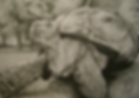 Cursos e aulas de desenho artístico, curso de desenho de ilustração, desenho artístico, cursos de desenho, aulas de desenho, desenho artístico, curso de pintura a óleo, pintura em tela, desenho 3D, curso de mangá, curso de caricatura, curso de retrato, curso de HQ, aptidão para vestibulares, curso de aquarela, aulas de mangá