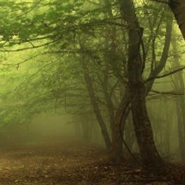 pagan_path_4.jpg