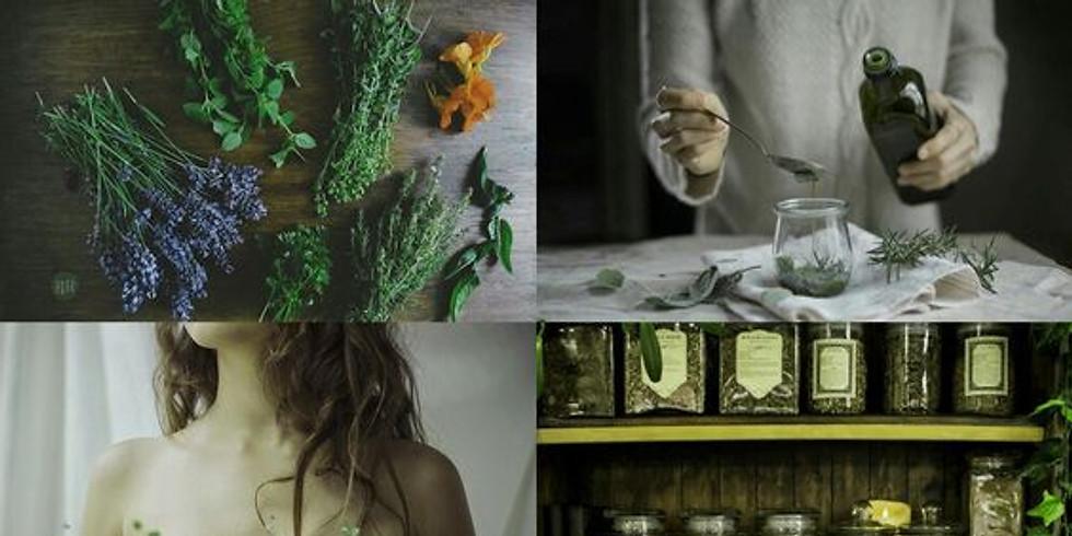 Curso Online: MAGIA VERDE - Herbanário e Magia Elemental