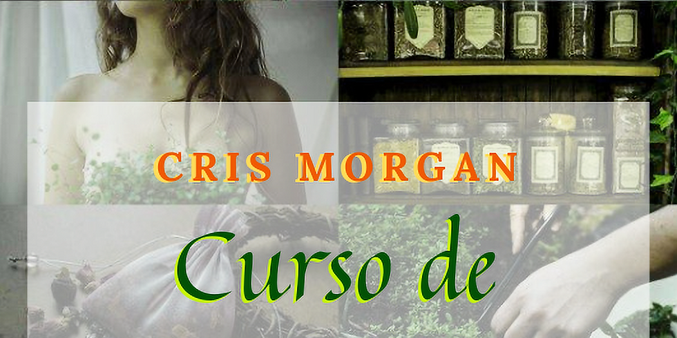 Curso no RJ: MAGIA VERDE - Herbologia e Magia do Reino Vegetal